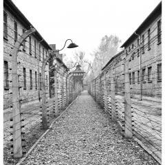 Yom Hashoah 2021 Holocaust Remembrance Day
